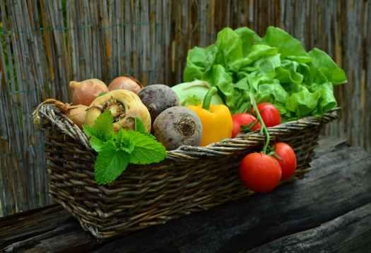 vegetables-vegetable-basket-harvest-garden.jpg